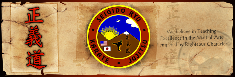 Seigido Ryu Karate and Jujitsu, Martial Arts, New Jersey